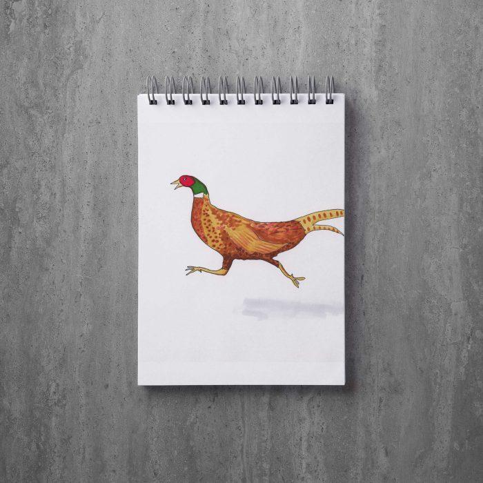 Blandade illustrationer, färg